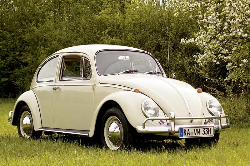 TRIVIAL-1-1965-BUG